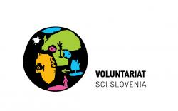 voluntariathorizontalvar2q